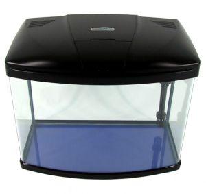 aquarium fish tank