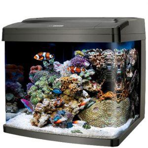 50L Aquarium Fish Tank Curved Glass Black