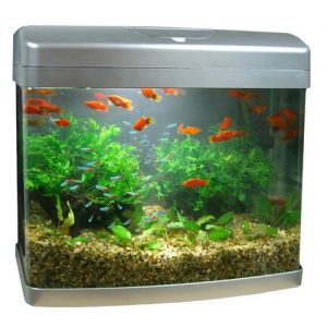 Aquarium Fish Tank Silver 50L Curved Glass